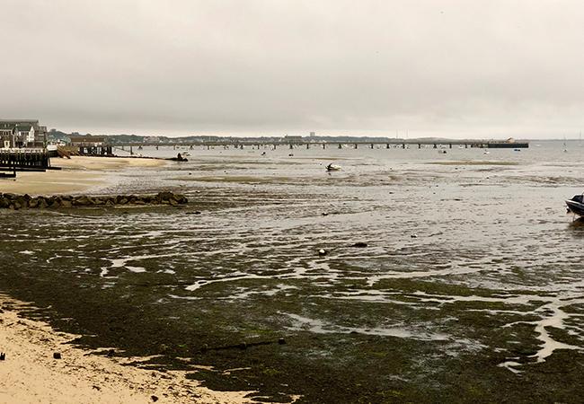 Provincetown flats, low tide